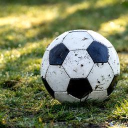 goed-nieuws:-zwolle-voetbalt-op-natuurgras-|-pools-leger-vertrekt-uit-tsjechie