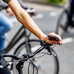 goed-nieuws:-vietnam-stopt-handel-wilde-dieren-|-fietsenverkoop-stijgt