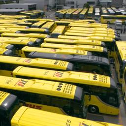video-|-japans-bedrijf-maakt-doolhof-met-zestig-touringcars