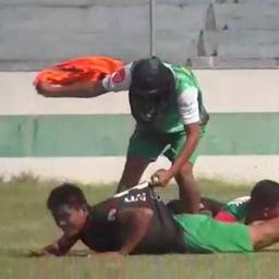 video- -bijenzwerm-verstoort-lokale-voetbalwedstrijd-in-bolivia