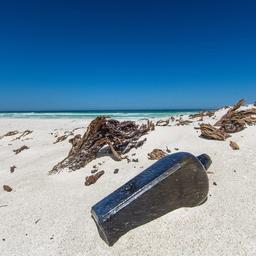 japanse-flessenpost-bereikt-na-37-jaar-hawaiaans-strand